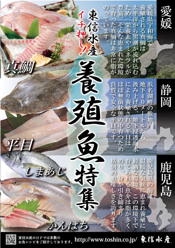 養殖魚POP3